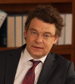 Professor of Strategy and International Business; Director of CEIBS Research Centre for Emerging Market Studies